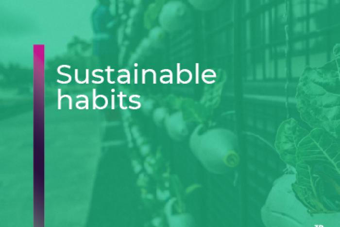 Sustainability | conscious habits respectful with the environment
