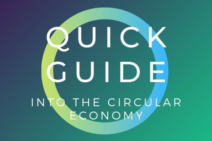 Quick guide into the circular economy